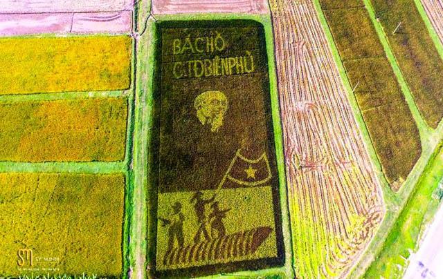 Độc đáo tranh Bác Hồ hiện ra trên cánh đồng khi lúa chín